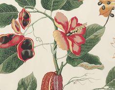 pierr frey, boussac, home accessories, beauti fabric, fabric nakai