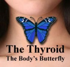 Hypothyroidism is really hard to overcome but people have done it. Here is my strategy for overcoming Hypothyroidism.