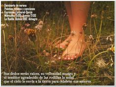 cuerpo-danza-terapia: Febrero Seminario de verano.