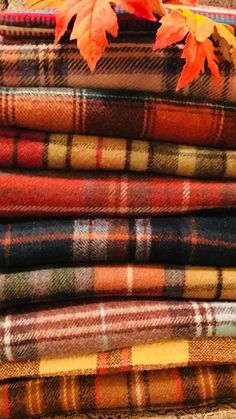 Fall wool tartan plaid blankets are so rich in color and add so much warmth to y. - Fall wool tartan plaid blankets are so rich in color and add so much warmth to your autumn decor - Fall Inspiration, Foto Top, Autumn Cozy, Happy Fall Y'all, Tartan Plaid, Fall Plaid, Tartan Decor, Tartan Fabric, Autumn Leaves