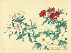 KONAN, Tanigami (1879 - 1928)