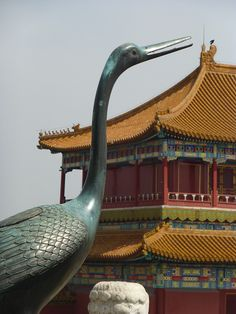 Forbidden City, Beijing, China... wow someone had a great eye... Love this!
