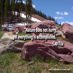 Nature does not hurry, yet everything is accomplished.   -Lao Tzu