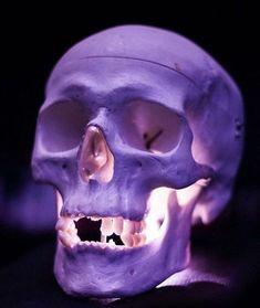 @ ^^&*( Centurion)][ //// Bring Back Lost love spell caster in MIDRAND,centurion, Skull Reference, Human Skull, Skull Face, Skull Head, Totenkopf Tattoos, Colorful Skulls, Skull Artwork, Skull Island, Desenho Tattoo