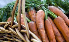 Nutzgarten: Die besten Gartentipps im Juli -  Gemüsegärtner haben jetzt alle Hände voll zu tun. Die Ernte von Salat, Möhren und Stangenbohnen ist in vollem Gange. Auch Erbsen und Frühkartoffeln räumen jetzt das Beet und hinterlassen eine tief gelockerte, nährstoffreiche Erde – ideal für den Anbau feiner Herbstgemüse.