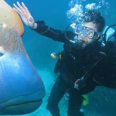 Scuba diving in Cairns. Fantastic experience. Always recall the moment I man up…