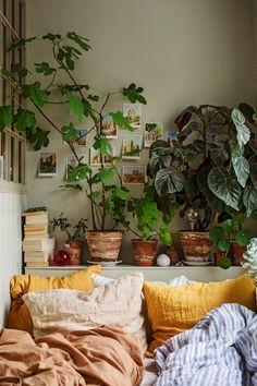 Boho Chic Bedroom, Cozy Bedroom, Bedroom Decor, Bedroom Ideas, Modern Bedroom, Contemporary Bedroom, Master Bedroom, Bedroom Brown, Bedroom Colors