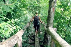 Did you know about the Forest Bathing trip which involves visiting a forest for relaxation and recreation while breathing in volatile substances called phytoncides (wood essential oils). For more updates on this visit us: http://bit.ly/2fyiA1f