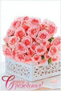 Нежные розы к дню Рождения