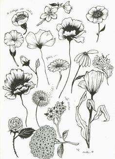 - Blumenumrisse – Flower Tattoo Designs – - Peony Flower Art PRINT of Pen Illustration Flower Drawing Watercolor Tatto, Watercolor Flower, Flower Tattoo Designs, Flower Tattoos, Flower Designs, Art Floral, Illustration Botanique, Illustration Flower, Muster Tattoos