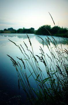 Misty Morning, Erics Willows Lake (Yorkshire).