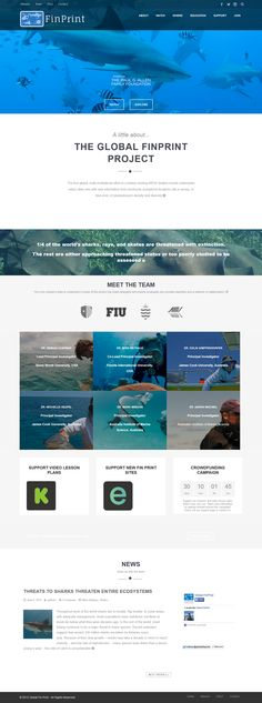CMS: WordPress Theme