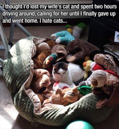 Funny Animal Pictures Of The Day � 18 Pics