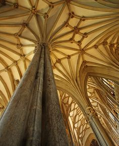 gothic ceiling by carter flynn Historical Architecture, Amazing Architecture, Art And Architecture, Architecture Details, Forest Room, Chapelle, Place Of Worship, Architectural Elements, Vaulting