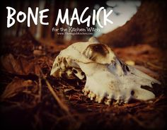 Bone Magick for the Kitchen Witch The Magick Kitchen600x470