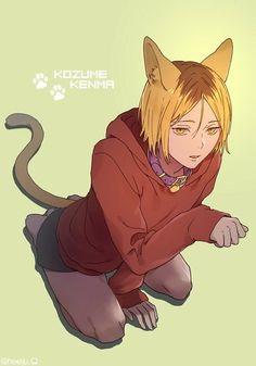 Neko Boy, Anime Cat Boy, Anime Art Girl, Maid Outfit Anime, Anime Maid, Kenma Kozume, Kuroken, Manga Haikyuu, Haikyuu Fanart