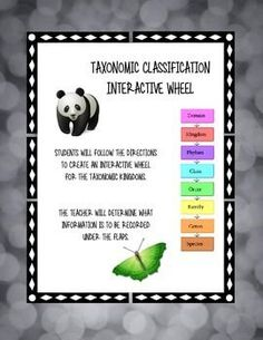 Students will complete the interactive notebook activity about the taxonomic kingdoms according to the instructions. Teacher can give instructions about the information that is required under the tabs of the wheel.
