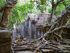 Inside of the Beng Mealea temple. Cambodia. 44km east of angkor