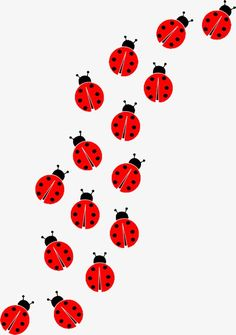 a nice insert for lady bug card Baby Ladybug, Ladybug Party, Ladybug And Cat Noir, Lady Bug Tattoo, Ladybug Crafts, Mothers Day Crafts For Kids, Love Bugs, Vinyl Wall Art, Clipart Images