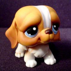 Littlest Pet Shop Snowfall Fun St. Bernard Puppy #76, 2004 Hasbro