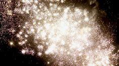 Fireworks in the night sky!