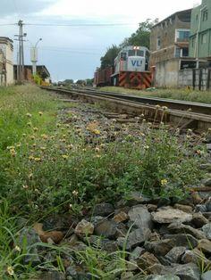 Estação ferroviária ,em Montes Claros, foto de Ana Claudia Campos.
