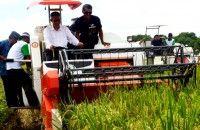 Pemerintah Siapkan Benih Unggulan untuk 6 Juta Hektare Lahan