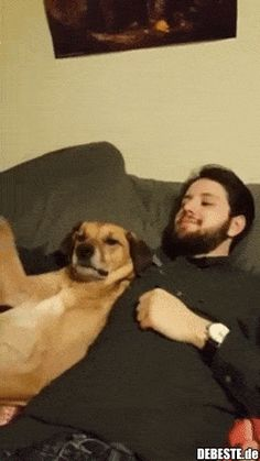 GOOFY GIFS TO MAKE YOU GRIN… and pets in the victorian times in england, and pets yahoo dogs swimming, and pets esl kids flashcards free, animals and pets movie rabbit family story. Animals And Pets, Baby Animals, Funny Animals, Cute Animals, I Love Dogs, Cute Dogs, Gato Animal, Funny Animal Pictures, Animal Memes
