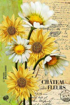 Decoupage Vintage, Vintage Paper, Sunflowers And Daisies, Retro, Vintage Labels, Rice Paper, Vintage Pictures, Flower Cards, Botanical Illustration