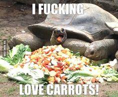 Ermahgerd carrots!