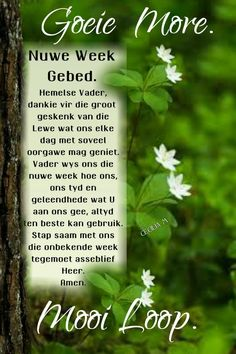 Lekker Dag, Evening Greetings, Afrikaanse Quotes, Goeie More, Christian Messages, Good Morning Messages, Trust God, Happy Friday, Poems