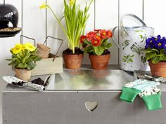Gardening Basics: HGTV + One Kings Lane 2013 Spring Promo, April 3-8. Learn More >> http://blog.hgtv.com/design/2013/04/03/go-shopping-buy-hand-picked-hgtv-items-on-one-kings-lane/?soc=pinokl
