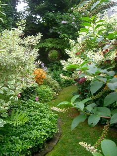 ArtofGardening.org: Things you'll be missing if you don't go on Open Gardens today and tomorrow