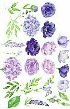 Best Snap Shots Purple Flowers painting Ideas Purple flowers are generally regal flowers. There're deluxe and extravagant, trendy as well as boheme. Botanical Art, Botanical Illustration, Watercolor Illustration, Watercolour Painting, Watercolor Flowers, Painting & Drawing, Painting Tips, Aquarell Tattoo, Plant Drawing