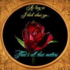 Share with your love or special someone this lively card everytime you think of him/ her. Free online I Think About You ecards on Everyday Cards Morning Hugs, Morning Wish, Get Well Messages, Get Well Cards, Beautiful Roses, Beautiful Day, I Think Of You, Told You So, Morning Sweetheart