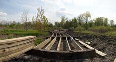 Craddock Wetlands   Muncie, Indiana