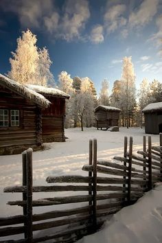 Winter ~ I can feel the stillness and the piercing cold . . . love the snow