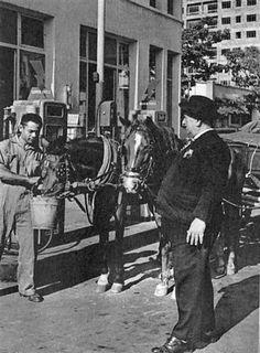 Isidoro mantener su oficio hasta muy entrado el siglo 20, se le consideró el último cochero de Caracas, profesión que ejerció hasta el dia de su muerte en 1963.