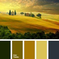Gamma of yellowish-green and green-brown tones is complemented by dark blue-gray. Such landscapes and panoramic photos will organically complement the inte.