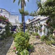 Patio de la calle San Juan de Palomares, 11.- Antigua casa de vecinos que dejó de serlo hace años. Se presento por primera vez a concurso en el año 1993.