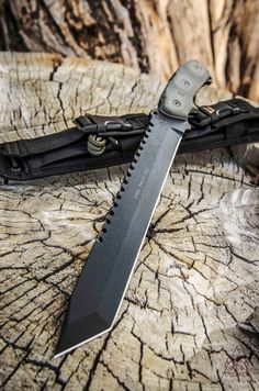 Steel Eagle 111A Tanto Point