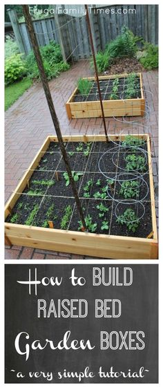 to Build Raised Garden Boxes DIY (Grow vegetables anywhere!) How to build simple raised garden beds. A cheap and easy DIY. Ideas, tutorial and plans in this post. Ours is on top of a brick driveway, where we grown vegetables in an otherwise wasted space, Building Raised Garden Beds, Raised Beds, Cheap Raised Garden Beds, Building Garden Boxes, Diy Garden Box, Garden Box Plans, Raised Garden Bed Plans, Design Jardin, Garden Design