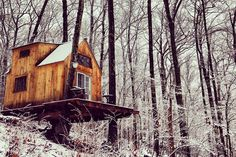 Carpenter Builds Woodland Love Nest For $4,000 in Just 6 Weeks...