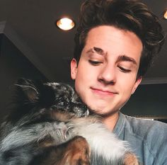 Charlie is cuter and prettier than the cat