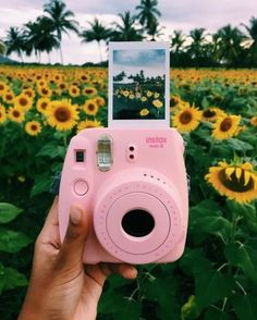 Camera Polaroid - Ideas That Produce Nice Photos Despite Your Talent!