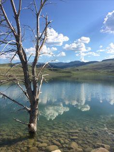Fishing outside Cody, Wyoming