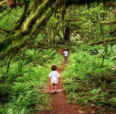 Kid-friendly trails: short, mostly easy, altogether beautiful | Pacific NW | The Seattle Times