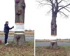 Faire flotter un arbre