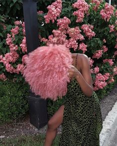 Dyed Curly Hair, Dyed Natural Hair, Curly Hair Styles, Natural Hair Styles, Hair A, Pink Hair, Hair Type, Afro Hairstyles, Pretty Hairstyles