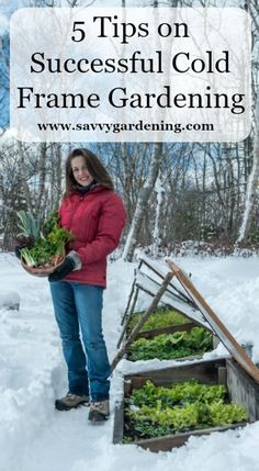 Use cold frames to grow vegetables in your garden during the fall, winter, and spring while the weather is still cold.